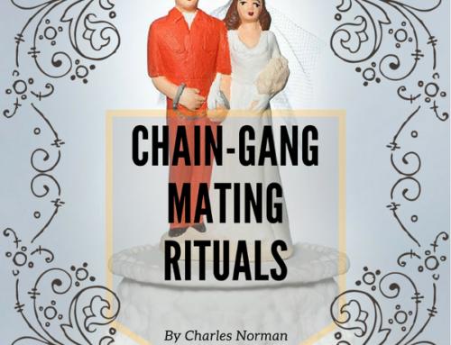 Chain-Gang Mating Rituals