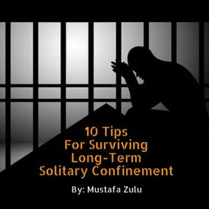 10 Tips For Surviving Long Term Solitary Confinement